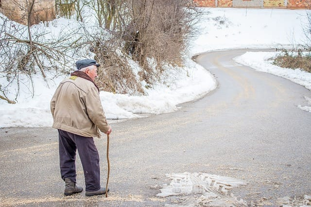 Gesundheit und Pflegebedarf im Alter